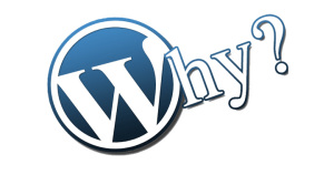 The Reasons Behind the Popularity of WordPress CMS?