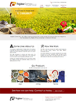 Web Page Design  Company In Kolkata